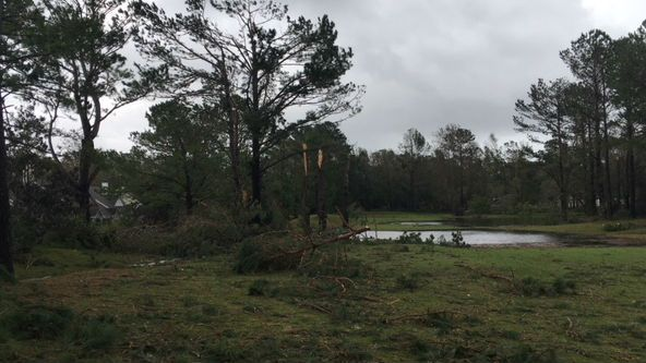 The tornado touched down on the north side of Porters Neck Road between Porters Neck Road and Tibbys Drive. (Source: WECT)