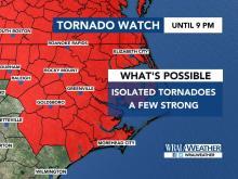 Tornado watch Tropical Storm Michael