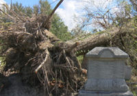 Florence cleanup may cause delays to funerals at Wilmington cemetery