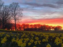 Sunset at Dorothea dix