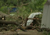 Tornado rips through 2.5 miles of Fayette County