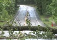 Severe weather: Storms, damaging winds knock out power to thousands in Raleigh, Fayetteville areas