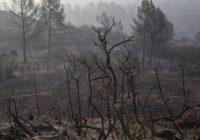 Wildfire rages in northeastern Spain, 53 evacuated