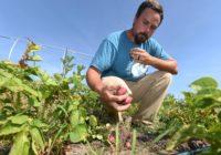 Thanks to community, hurricane-ravaged farm bounces back