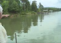 Concerns about more rain, potential flooding with debris still in waterways