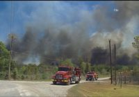 Austin Fire: Be prepared for summer wildfire season
