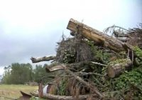 Wary after May tornado, Wendell residents watch the skies when new storms threaten