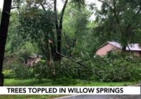 Severe weather leaves Raleigh couple with unique kind of storm damage