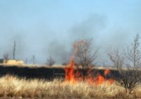 Two Wildfires With Unknown Causes Burning Through Panhandle Brush Land