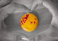 100% of Bakery Lorraine's 'Bahama Macaron' Sales to Benefit Hurricane Dorian Victims
