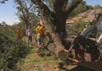 Free Disaster Legal Hotline Available To Those Affected By North Texas Tornadoes, Severe Storms