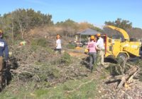 Williamson Co. starts defensible space work in Georgetown to prevent wildfires