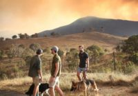 Wildfire threatens homes on Australian capital's outskirts