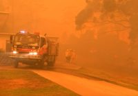 How to give wisely to help Australia wildfire relief efforts