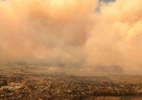 How to help support the Australian wildfires relief effort