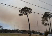 Orton Plantation announces hurricane debris prescribed burn