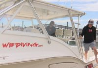 'This is almost like a spring hurricane': COVID-19 restrictions dry up diving business