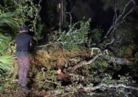 National Weather Service confirms at least 2 tornadoes in Brunswick Co.