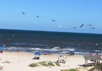 Padre Island National Seashore set to reopen Thursday after cleaning up from Hurricane Hanna