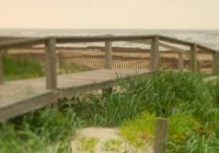 Several Texas State Parks along the coast closing due to Hurricane Laura
