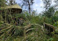 San Antonio Zoo Joins Recovery Effort at Louisiana Zoo Damaged by Hurricane Laura