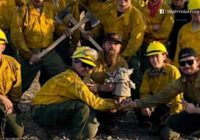 Boy sends Baby Yoda doll to help firefighters battle wildfires