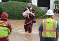 North Carolina governor declares emergency over floods
