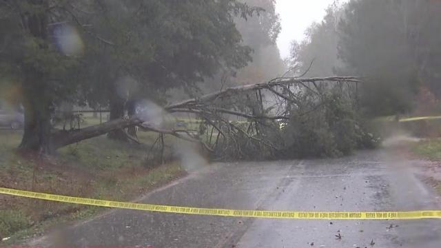 Trees have fallen in some places in the Triangle
