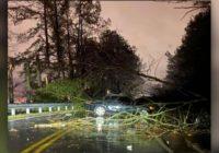Tornado leaves several injured, homes damaged in Alabama