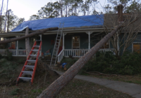 Family lucky to be alive after tornado sends trees crashing into their home