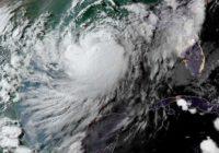 Scientists predict 'above average' hurricane season in 2021