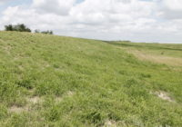 Border Wall Construction Left These South Texas Levees Damaged Ahead Of Hurricane Season