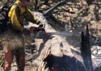 Texas A&M Forest Service Sends Additional Personnel To Fight Wildfires Burning In Western States