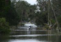 TikToks show disastrous chaos Hurricane Ida caused in Louisiana