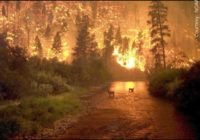 Major wildfires threatening towns in Montana, California