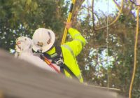 'It is what it is' | Five days after Hurricane Nicholas, hundreds are still without power